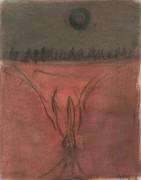 Užtemimas (Nušvitimas), 2006